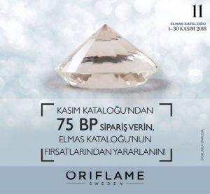 oriflame kasım elmas kataloğu